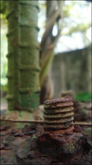 Rusted Bolt - Free Stock Photo