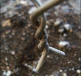Free Photo - Barbwire