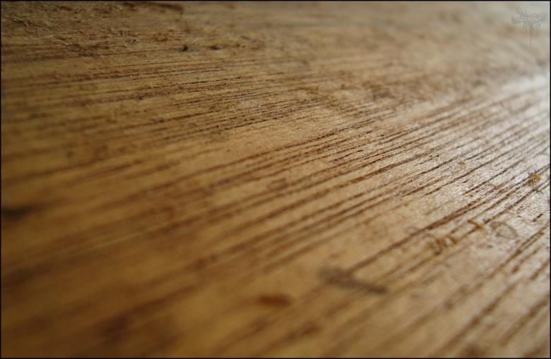 Free Stock Photo of Wood Texture Created by RIC ALTEA