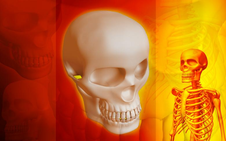 Free Stock Photo of Red Skeletal Medical Background Created by dileepdivakaran