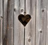 Free Photo - Heart on wood