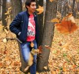 Free Photo - man in the forest