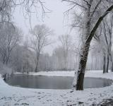 Free Photo - Winter lake