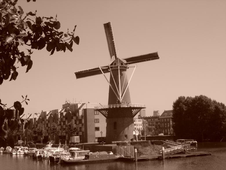 Free Stock Photo of Sepia windmill Created by Katarzyna Kozłowska