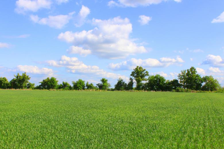 Free Stock Photo of Beutiful field Created by Val Lawless