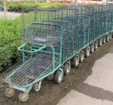Free Photo - Shopping carts in a garden center