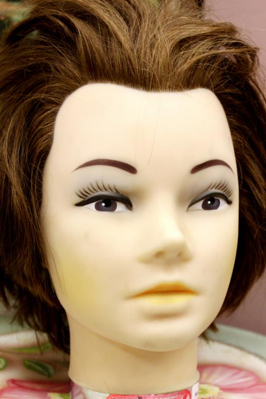 Free Stock Photo of Mannequin head with real hair Created by Val Lawless