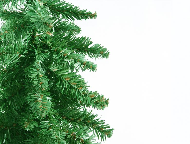 Green Christmas tree border Free Photo