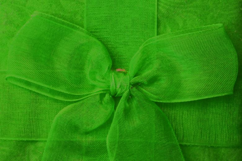 Green bow Free Photo