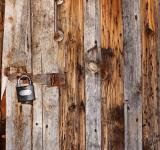 Free Photo - Wooden Background