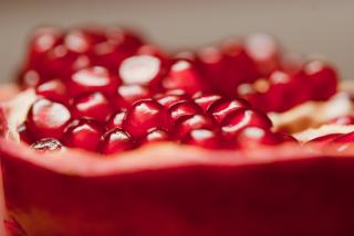 Pomegranate Free Photo
