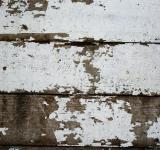Free Photo - Cracked Wood Texture