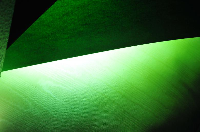 Free Stock Photo of Green Leaf Texture Created by asaad ahmed