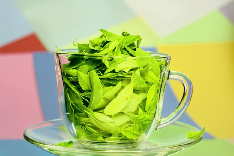 Free Stock Photo of Green tea  Created by 2happy