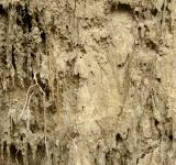 Free Photo - Muddy Wall Texture