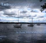 Free Photo - Wait On The Lord