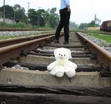 Free Photo - Bear on the railroad