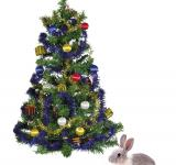 Free Photo - Christmas Bunny