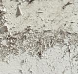 Free Photo - Peeled paint texture