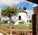 Free Photo - Traditional Windmill in Fuerteventura