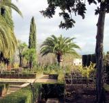 Free Photo - Gardens of the Alhambra de Granada