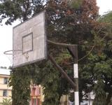 Free Photo - A basketball basket