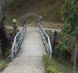 Free Photo - A bridge