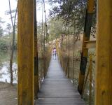 Free Photo - A hanging bridge