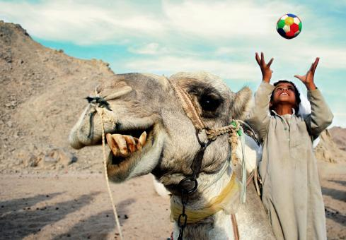 A happy camel and boy - Free Stock Photo