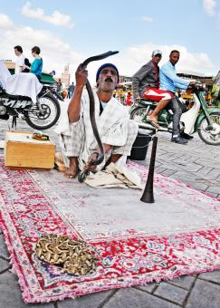 Snake Charmer in morocco - Free Stock Photo