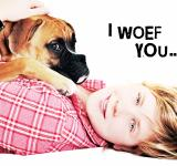 Free Photo - Love between dog and girl