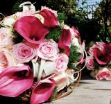Free Photo - Bouquet of flowers