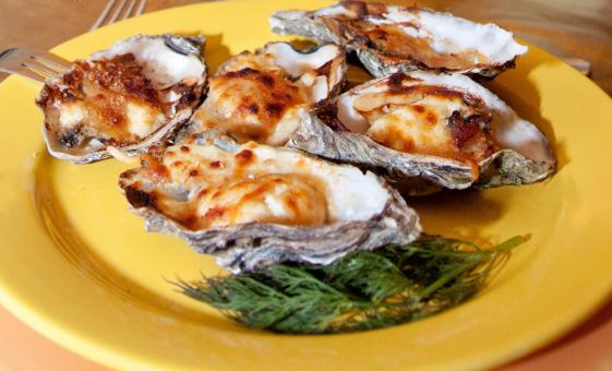Oysters on plate - Free Stock Photo