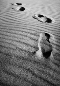 Footsteps on sand - Free Stock Photo