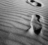 Free Photo - Footsteps on sand