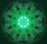 Free Photo - Mandala background