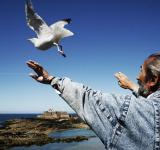 Free Photo - Bird whisperer