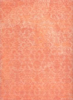 Salmon Texture - Free Stock Photo