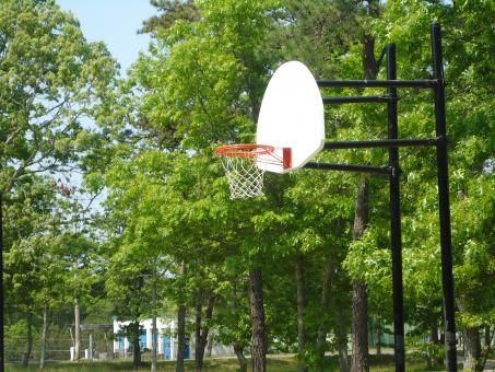 Basketball Hoop - Free Stock Photo