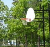 Free Photo - Basketball Hoop