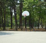 Free Photo - Basketball Court Hoop
