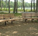 Free Photo - Park Benches
