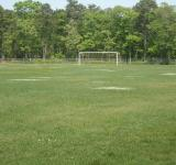 Free Photo - Soccer Field