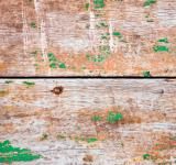 Free Photo - wooden planks with old green paint