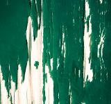 Free Photo - painted wood green