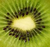 Free Photo - Kiwi close up