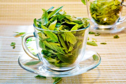 Cup with leaves - Free Stock Photo