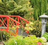 Free Photo - Japanese garden bridge