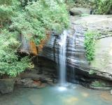 Free Photo - Rainforest Waterfall