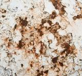 Free Photo - Rusty metal texture